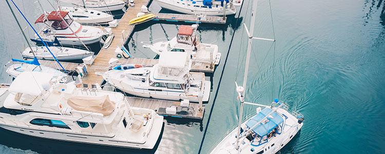 marina-liability-banner